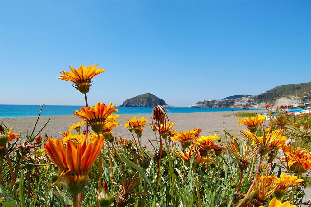 Wellnessreisen nach Ischia in Italien