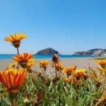 Die Osterferien auf Ischia verbringen