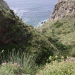 Urlaub auf Ischia